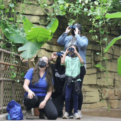 A family looks through binoculars