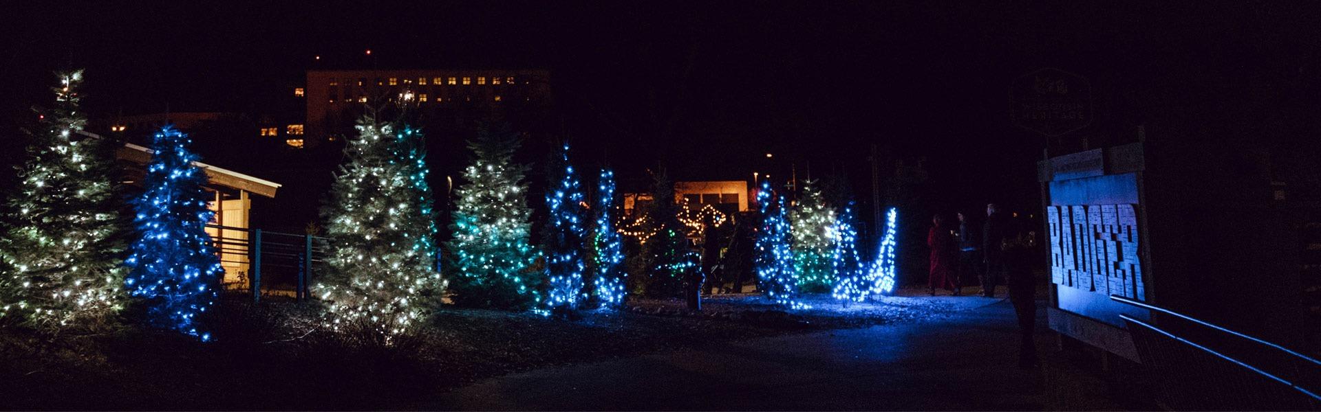 Christmas Lights Madison Wi 2020 Zoo Lights | Events | Henry Vilas Zoo