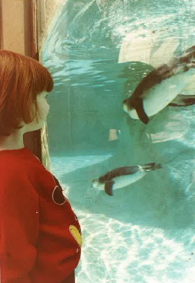 Penguin Exhibit 1986