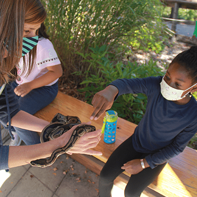 Zoo School student with a snake